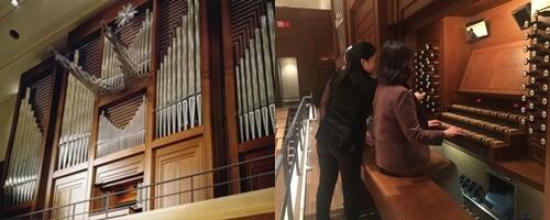 201210-210314 organ trial image.jpg